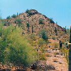 Scottsdale Arizona by Imagery