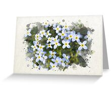 Bluet Flowers Watercolor Art Greeting Card