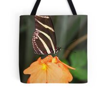 Zebra Longwing on Flower - Heliconius charithonia Tote Bag