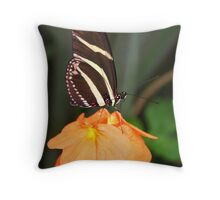 Zebra Longwing on Flower - Heliconius charithonia Throw Pillow