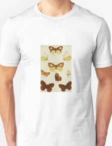 Old Butterfly chart T-Shirt