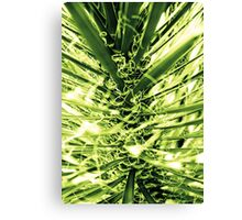 Palm Tree Tesla Canvas Print