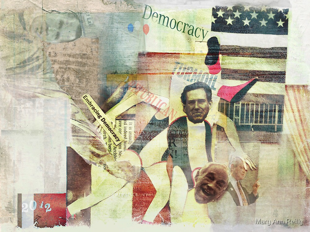 Democracy in Turmoil by Mary Ann Reilly