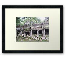 Natural Destruction Framed Print