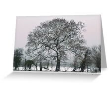 Winter Tree at Wraysbury Greeting Card