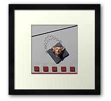 C 1 Framed Print