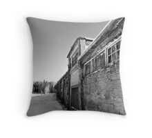 Abandoned Building Lost to Nature Throw Pillow