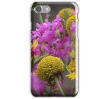Hudson Shoreline Color iPhone Case/Skin