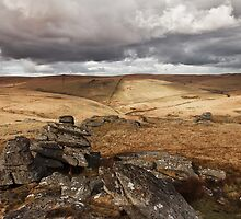 Beardown Tors, Dartmoor, Devon, UK by daynov