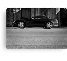 Day Forty-six Canvas Print