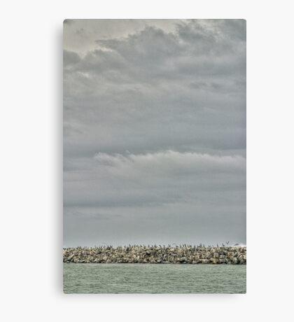 Seascape_6090 Canvas Print
