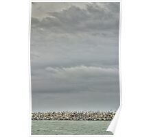 Seascape_6090 Poster