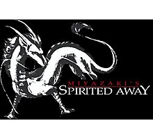 Spirited away dragon Photographic Print