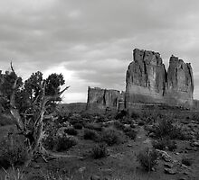 Arches National Park by Bryant Scannell