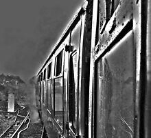 Hogwarts Carriage & Steam in Black & White by Aldakila