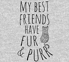 my best friend have fur and purr #3 Womens Fitted T-Shirt