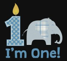 First Birthday Elephant Baby Tee