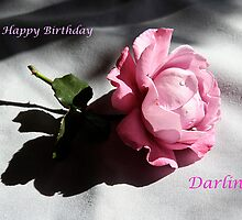 Happy Birthday Darling by Maggie Hegarty