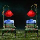 Poppy Dreams & Chameleon Schemes by Elizabeth Burton