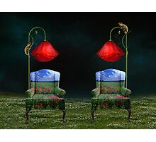 Poppy Dreams & Chameleon Schemes Photographic Print