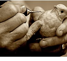 The Carver's Hands by Margaret  Shark