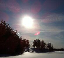 Sunny Winter Day by Brady Flageole
