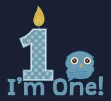 First Birthday Owl Kids Tee