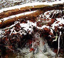little winter waterfall by LoreLeft27