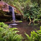 Lower Kalimna Falls 4 - Otways by Hans Kawitzki