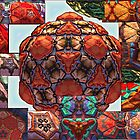 Amazing Dodecas #5: Close-up Montage (UF0643) by barrowda