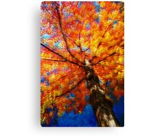 Looking Up At The Fall Canvas Print