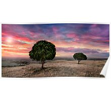 Barossa Valley Sunset Poster
