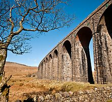 Ribblehead Viaduct by Stephen Knowles