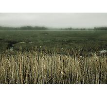Misty Holes bay Photographic Print