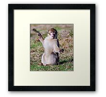 Was this Big,  !!!!! Believe me it was !!! Framed Print