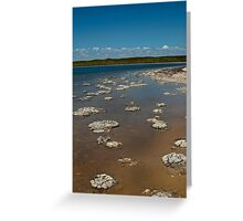 Lake Thetis Greeting Card