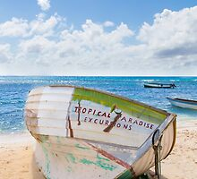 A shipwreck on the beach in the Caribbean by wsfbubble