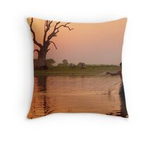 Almost end of the day  Throw Pillow