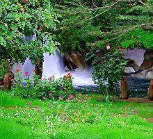 Waterfalls, Caburgua, Chile by Daidalos