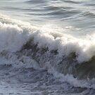 Playing in the Surf IV - Jugando en el oleaje by PtoVallartaMex