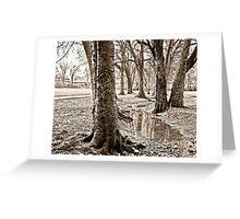 Crook in the Creek Greeting Card