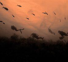 Divers on wall, Nassau, Bahamas by Shane Pinder