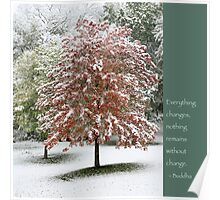 Snowy Maple Tree With Buddha Quote Poster