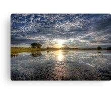 Sun Sneak Canvas Print