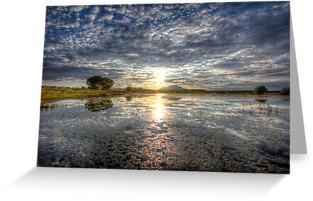 Sun Sneak by Bob Larson