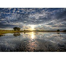 Sun Sneak Photographic Print