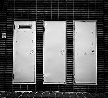 Three Doors by JelmervNuss