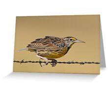 Meadowlark Greeting Card