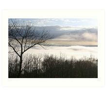 Clouds in the Trees - Nature Photography Art Print