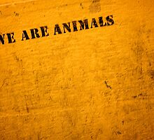 we are animals by trounoir